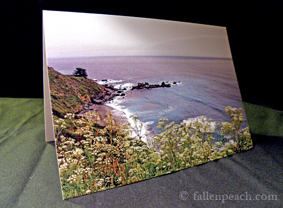 Pacific Coast Highway Drive Photograph by fallenpeach on etsy